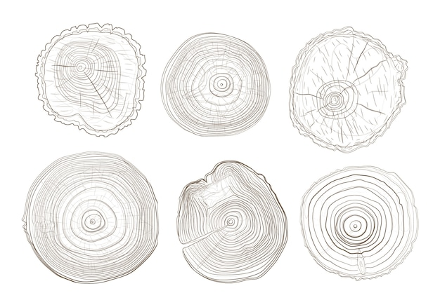 Outline tree circles