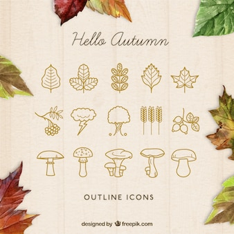 Outlined autumn icons
