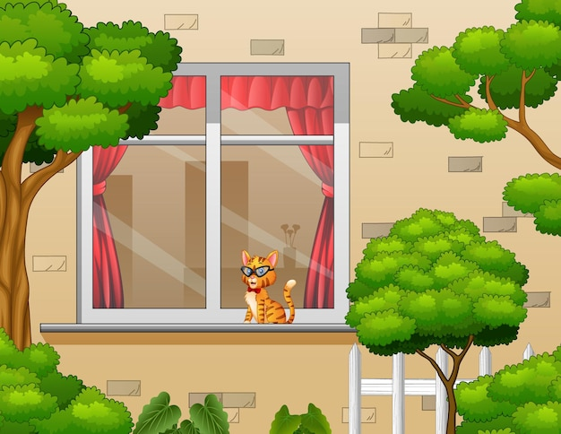 Внешний вид с кошкой в окне