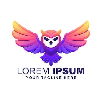 Owl bird modern colorful logo
