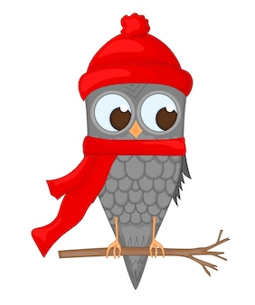 Owl on the branch in the santa claus hat and scarf.