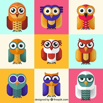 Owl collection of nine
