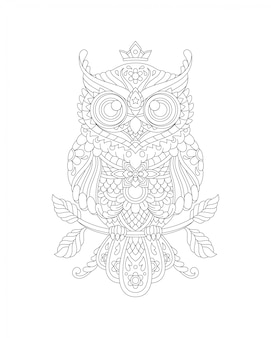 Owl coloring page book illustration