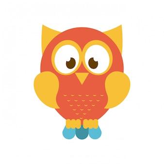 Owl design over white  background vector illustration