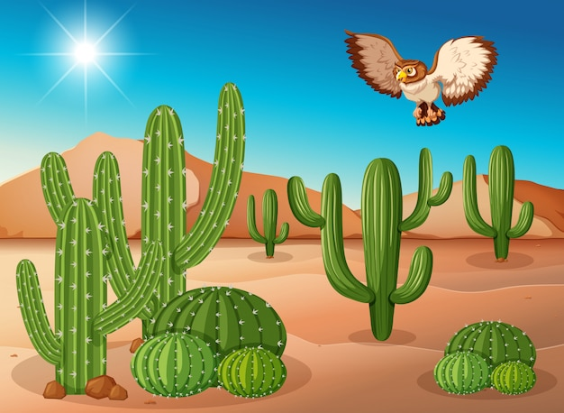 Owl flying over cactus in desert