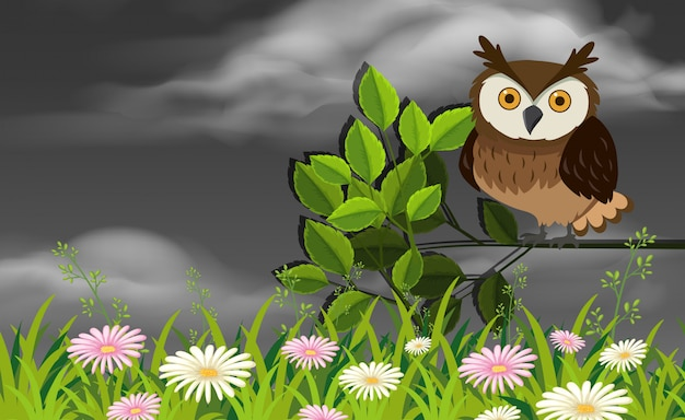 Owl in a garden scene