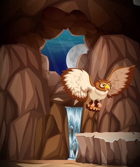 Owl hunting at night in cave