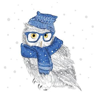 帽子とスカーフのフクロウは手で描かれました。鳥の服。眼鏡。