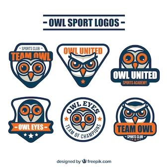 6つのフクロウのロゴコレクション