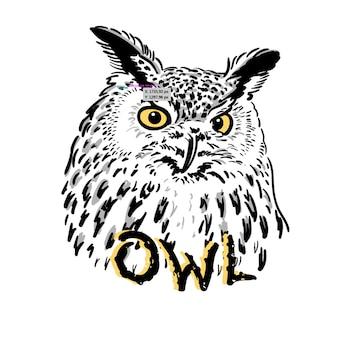 Owl logos and emblem