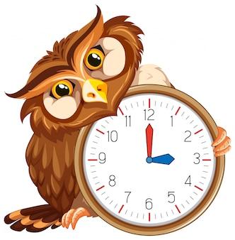 An owl on modern clock