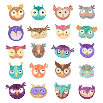 Owl and owlet faces cartoon of cute birds of prey with colorful feathers and funny big eyes