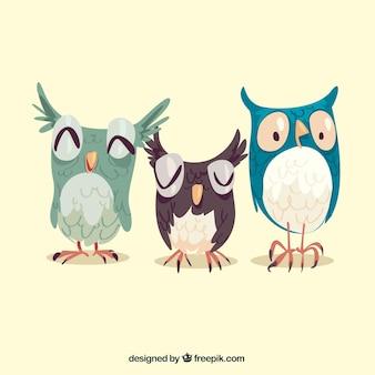 3つのフクロウのパック