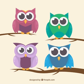 Owl pack with branches