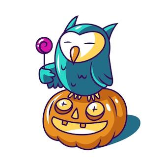 Owl and pumpkin halloween