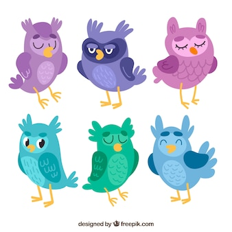 Owl set in different colors