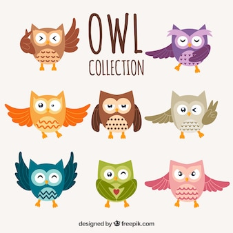 Owl set of six