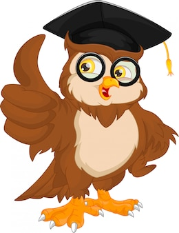 Owl wearing graduation cap