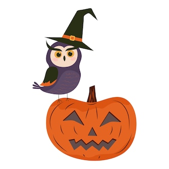 An owl in a witchs hat sits on a jackolantern pumpkin halloween illustration
