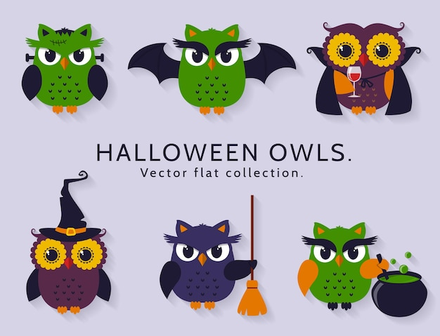 Owls are dressed in costumes of witch