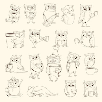 Owls with cup. sleep concept birds characters sitting on coffee cups vector illustrations. bird owl sleep drawing, doodle humor line emotion