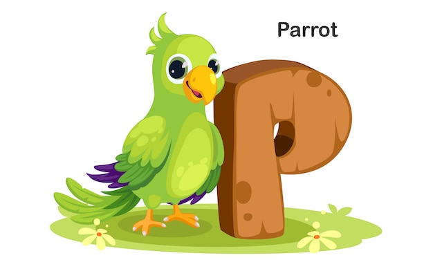 P for parrot
