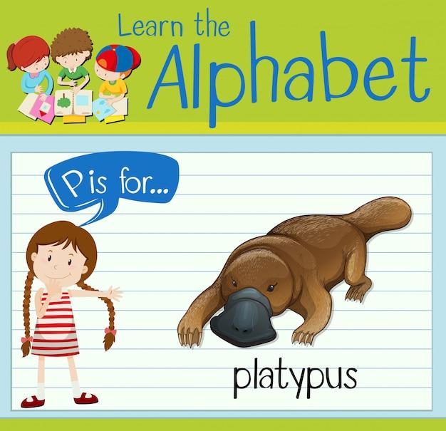 フラッシュカード文字pはカモノハシです