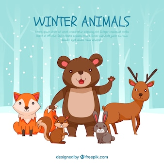 Pack of beautiful forest animals