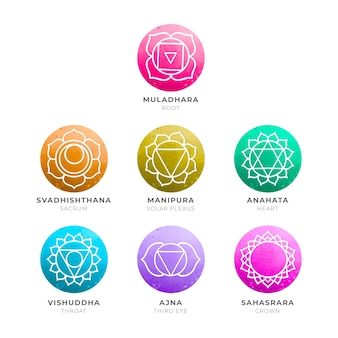 Pack of colorful chakras