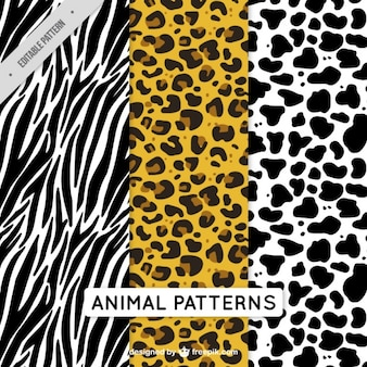 Pack of decorative animal patterns