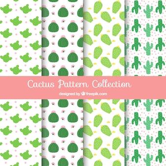 Pack of decorative cactus patterns