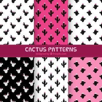 Confezione di modelli decorativi di cactus
