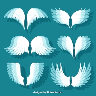 Pack of decorative wing elements