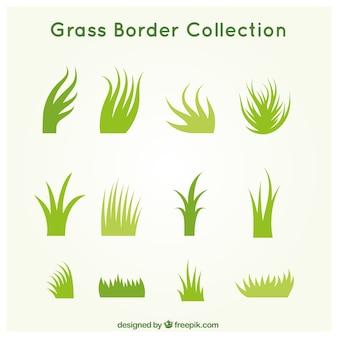 Confezione da erba diversa