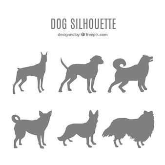 Pack of dog silhouettes