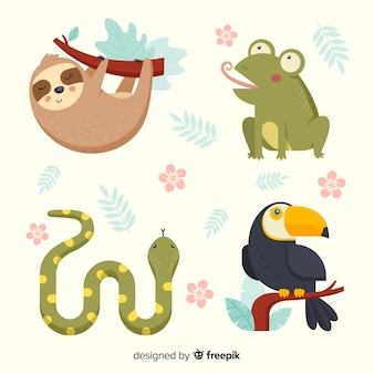 Pack of exotic cute animals