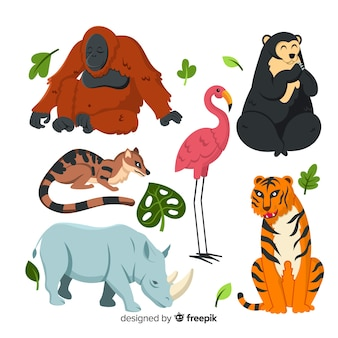 Pack of flat tropical animals