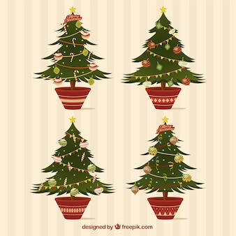 Pack of four fir trees for christmas