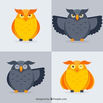 Pack of gray and golden owls