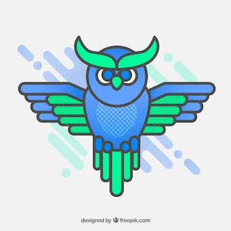 Pack of green and blue owl in flat design