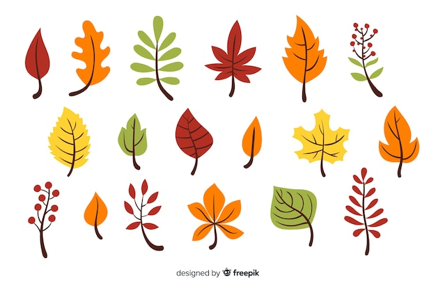 Pack of hand drawn autumn leaves