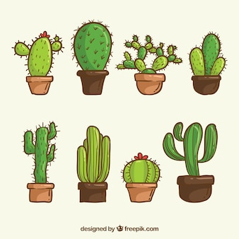 Pack of hand drawn cactus