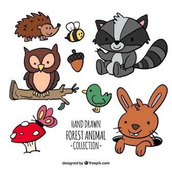 Confezione di disegnati a mano animali della foresta dei cartoni animati