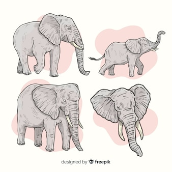 Pack of hand drawn elephants