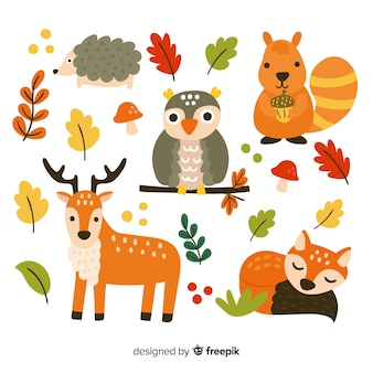 Pack of hand drawn forest animals