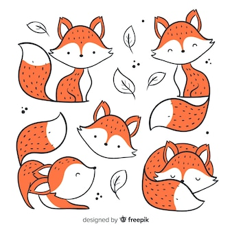 Pack of hand drawn foxes
