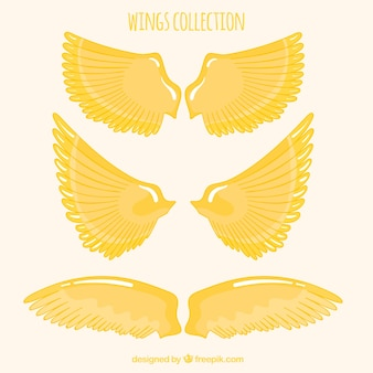 Pack of hand-drawn golden wings