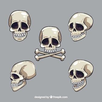 Pack of hand drawn skulls
