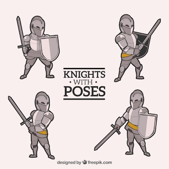 Pack of knight with different poses