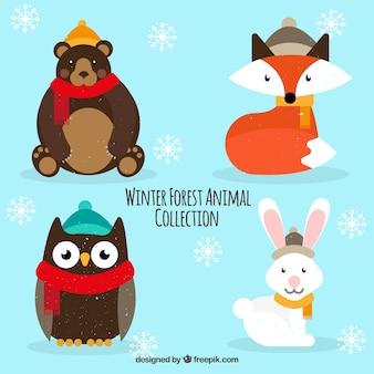 아름다운 숲 동물의 팩